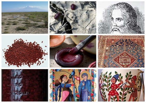 Vordan Karmir - Armenian kermes crimson dye