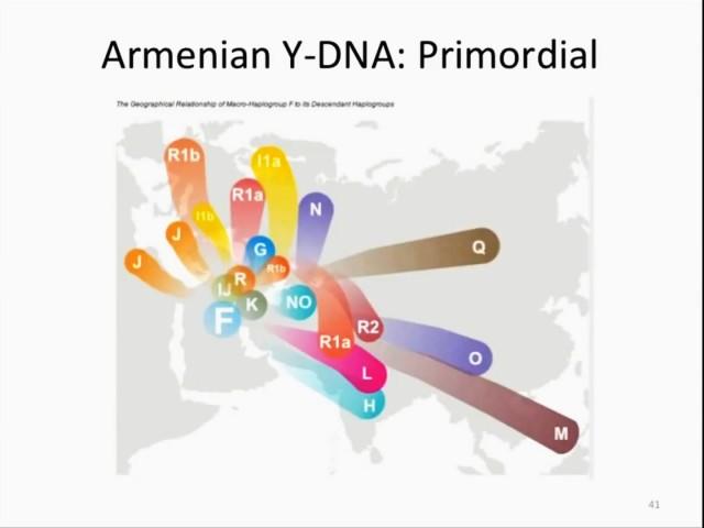Armenian DNA